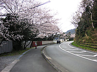 0329_13